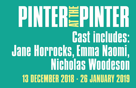 Entradas para Obra Pinter: The Room/Victoria Station/Family Voices en Londres (Harold Pinter Theatre)